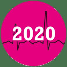 Suuri-verkkokauppa-alustaraportti-2020