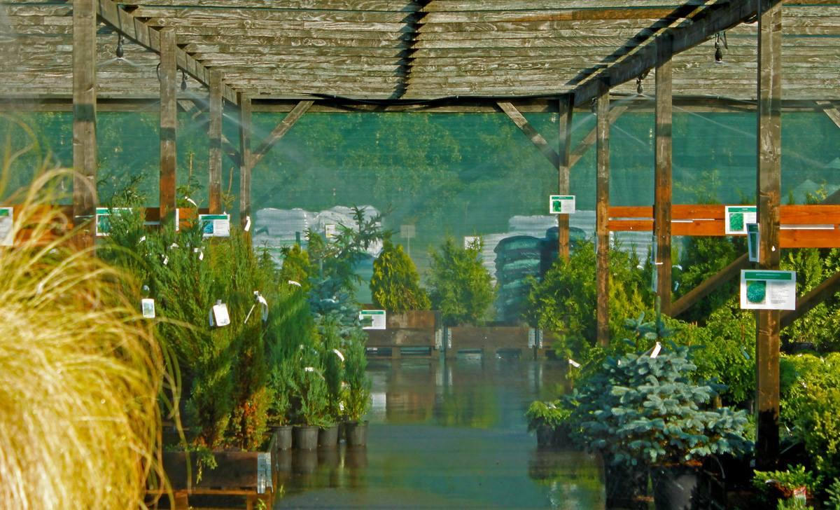 Viherpeukalot on luonut toistuvasti nahkansa liiketoimintaympäristön muuttuessa